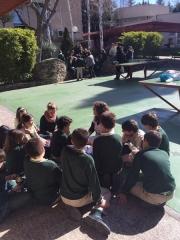 Colegio Los Sauces