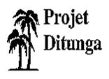 Projet Ditunga